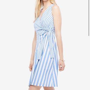 NWT Ann Taylor Stripe Poplin Flare Dress